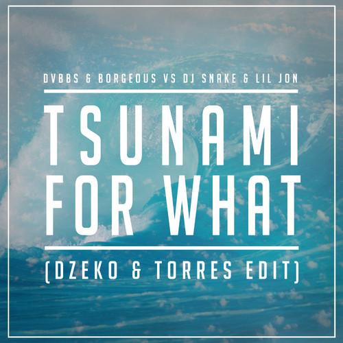 tsunami-for-what-dzeko-torres