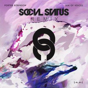 sea of voices social status remix