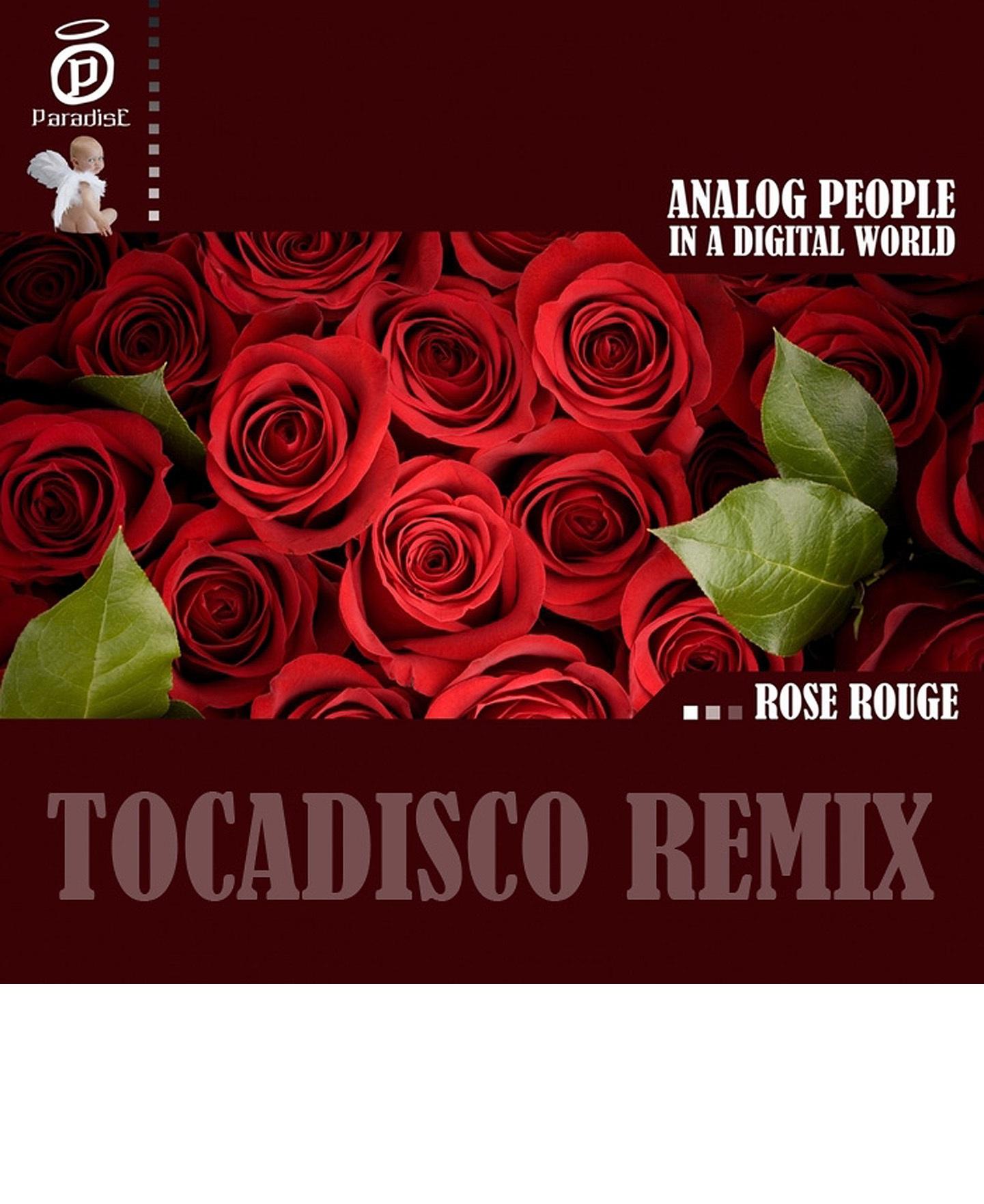 Teaser: Analog People in a Digital World – Rose Rouge (Tocadisco Remix)