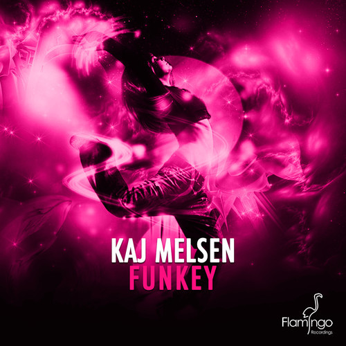 Kaj Melsen - Funkey (Preview)