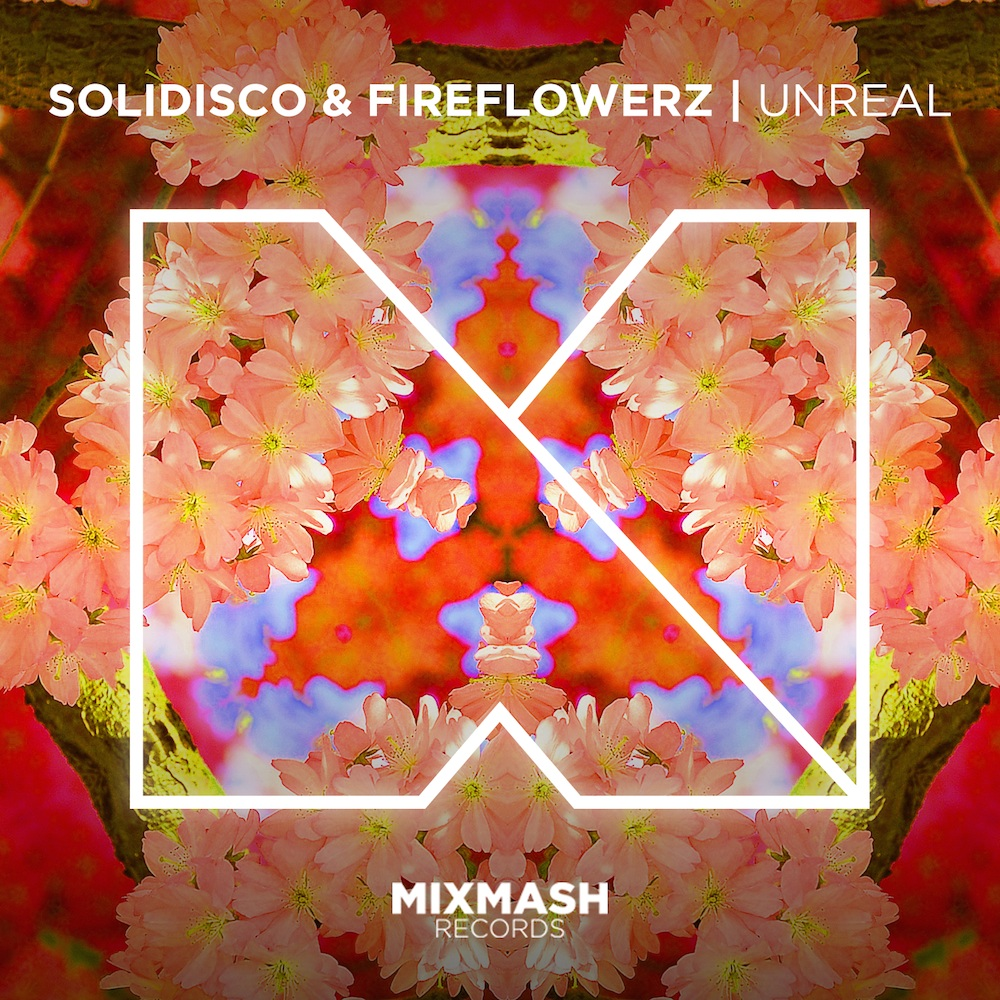 solydisco_fireflowers