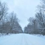 winter mixtape beattown
