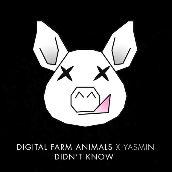 Digital Farm Animals (Feat. Yasmin) - Didn't Know