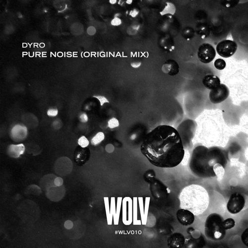 Dyro - Pure Noise (Preview)