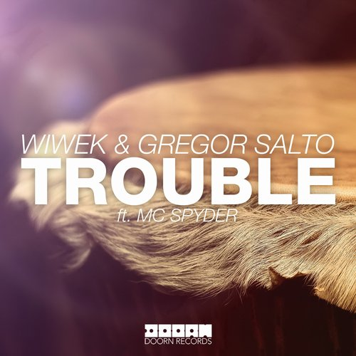 Wiwek & Gregor Salto ft. MC Spyder - Trouble