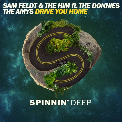 Sam Feldt & The Him featuring The Donnies The Amys - Drive You Home