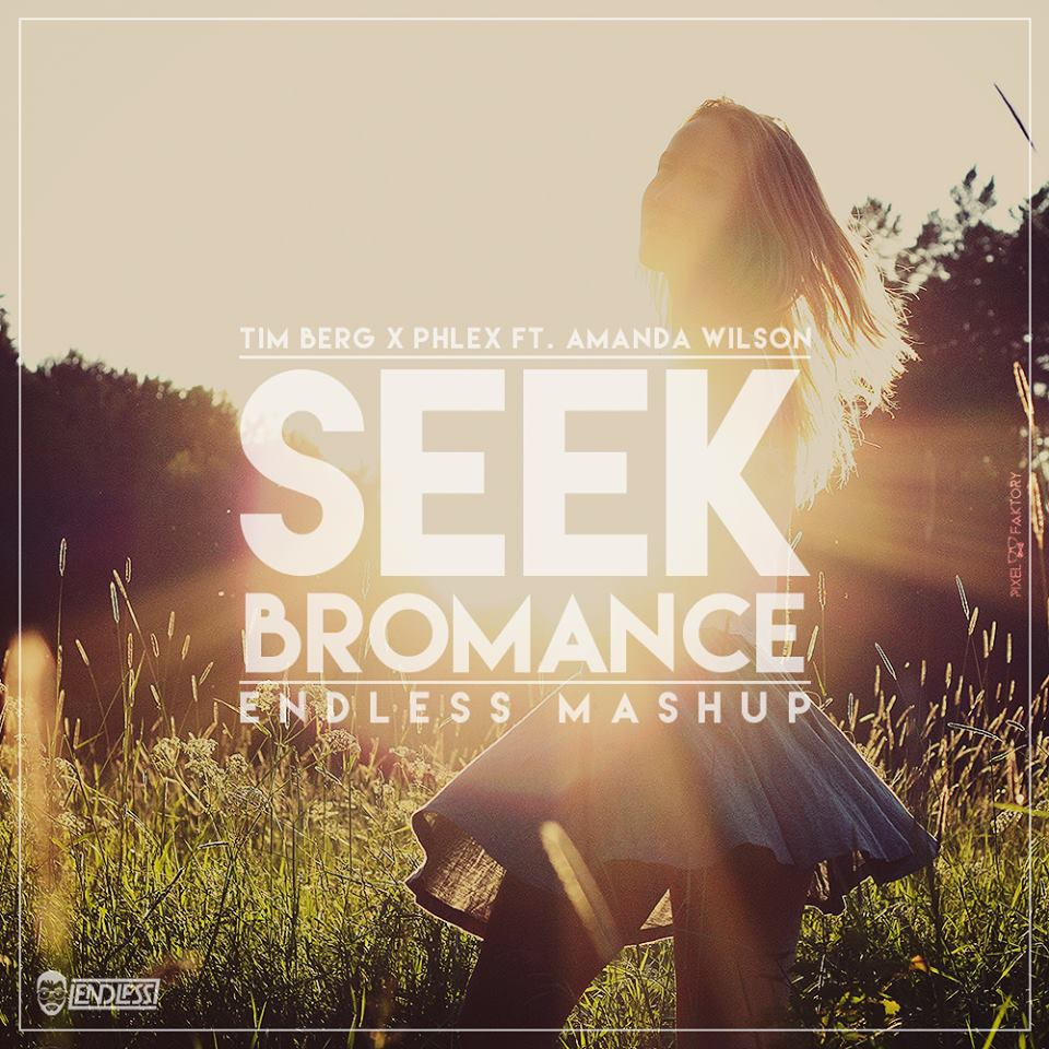 Tim Berg x Phlex ft. Amanda Wilson - Seek Bromance (Endless Mashup)