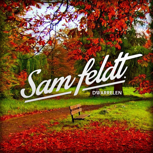 Sam Feldt - Dwarrelen